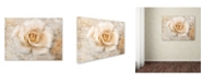 "Trademark Global Jai Johnson 'Vintage Rose 5' Canvas Art - 47"" x 35"" x 2"""
