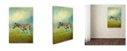 "Trademark Global Jai Johnson 'Summer Zebra 2' Canvas Art - 47"" x 30"" x 2"""