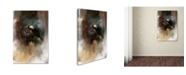 "Trademark Global Jai Johnson 'Winter Eagle 2' Canvas Art - 19"" x 12"" x 2"""