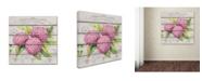 "Trademark Global Jean Plout 'Pink Hydrangeas' Canvas Art - 35"" x 35"" x 2"""