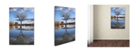 "Trademark Global Robert Harding Picture Library 'Dead Tree' Canvas Art - 19"" x 12"" x 2"""