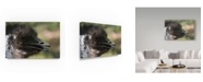 "Trademark Global Robert Michaud 'Emu' Canvas Art - 47"" x 30"" x 2"""