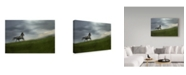 "Trademark Global Milan Malovrh 'Alone White Horse' Canvas Art - 24"" x 2"" x 16"""