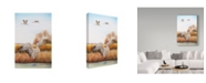 "Trademark Global Jean Plout 'Sandhill Cranes' Canvas Art - 24"" x 16"" x 2"""