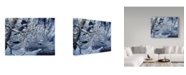 """Trademark Global Jeff Tift 'Icy Reflections' Canvas Art - 24"""" x 18"""" x 2"""""""