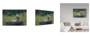 "Trademark Global Nicolas Merino 'Daddy' Canvas Art - 19"" x 2"" x 12"""