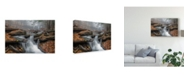 "Trademark Global Nick Kalathas 'Morning Fog Stream' Canvas Art - 19"" x 2"" x 12"""