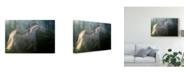 "Trademark Global Milan Malovrh 'Play Ground' Canvas Art - 19"" x 2"" x 12"""