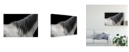 "Trademark Global Piet Flour 'The Gray Horse' Canvas Art - 32"" x 2"" x 22"""