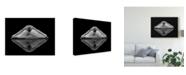 """Trademark Innovations Pauline Pentony Ma 'Ballerina Reflection' Canvas Art - 47"""" x 2"""" x 35"""""""