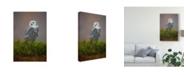 "Trademark Global Milan Zygmunt 'Snowy White Owl' Canvas Art - 16"" x 2"" x 24"""