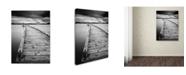 """Trademark Global Moises Levy 'Motchia' Canvas Art - 24"""" x 18"""" x 2"""""""