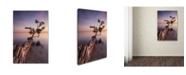 "Trademark Global Moises Levy 'Water Tree IV' Canvas Art - 47"" x 30"" x 2"""