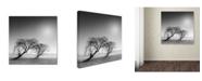 "Trademark Global Moises Levy 'Reverencia' Canvas Art - 35"" x 35"" x 2"""