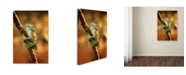 "Trademark Global Ridha 'Climb' Canvas Art - 47"" x 30"" x 2"""