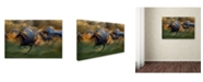 "Trademark Global Milan Malovrh 'Fiery Gallop' Canvas Art - 47"" x 30"" x 2"""