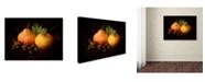 "Trademark Global Jerome Zakka Bajjani 'Nature Morte 3' Canvas Art - 24"" x 18"" x 2"""