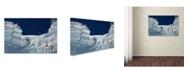 "Trademark Global Tristan Shu 'Cliff Jumping' Canvas Art - 47"" x 30"" x 2"""
