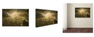 """Trademark Global Izabela Laszewska Mitrega 'Mist Light And Silence' Canvas Art - 32"""" x 22"""" x 2"""""""