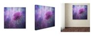 """Trademark Global Natalia Simongulashvili 'Ecstasy' Canvas Art - 14"""" x 14"""" x 2"""""""