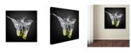 "Trademark Global isma Yunta 'Fresh Limes' Canvas Art - 35"" x 35"" x 2"""