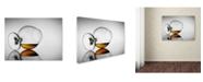 "Trademark Global Jackson Carvalho 'Brandy Taste' Canvas Art - 32"" x 24"" x 2"""