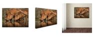 "Trademark Global Jaco Marx 'Delicate' Canvas Art - 47"" x 35"" x 2"""