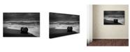 "Trademark Innovations Niels Christian Wulff 'The Human Element' Canvas Art - 19"" x 12"" x 2"""