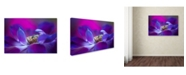"Trademark Global Jacky Parker 'Windflower' Canvas Art - 47"" x 30"" x 2"""