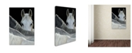 "Trademark Global Milan Malovrh 'Look' Canvas Art - 19"" x 12"" x 2"""