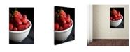 "Trademark Global Mike Melnotte 'Strawberry Still' Canvas Art - 47"" x 30"" x 2"""