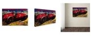 "Trademark Global Lantern Press 'Sports 15' Canvas Art - 12"" x 19"""