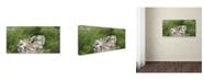 "Trademark Global Kurt Shaffer 'Windy Day at the Beach' Canvas Art - 16"" x 32"""