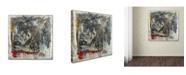 "Trademark Global Joarez 'Furia e Paixao' Canvas Art - 18"" x 18"""