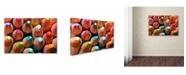 """Trademark Global Jason Shaffer 'Pencils' Canvas Art - 24"""" x 16"""""""