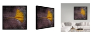 "Trademark Global John W. Golden 'Gingko Purple' Canvas Art - 18"" x 18"""