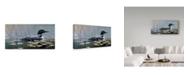 """Trademark Global Wilhelm Goebel 'Loon In Reeds' Canvas Art - 16"""" x 32"""""""