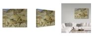 "Trademark Global John Singer Sargent 'The Quarries To Carrara' Canvas Art - 24"" x 18"""