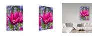 "Trademark Global Ian Tornquist 'Tulip Fest' Canvas Art - 16"" x 24"""