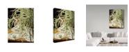 "Trademark Global Jan Benz 'Queen Of The Jungle' Canvas Art - 18"" x 24"""