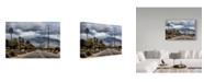 "Trademark Global Janice Sullivan 'Palm Spring Clouds' Canvas Art - 19"" x 12"""