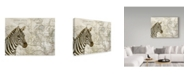"Trademark Global Jane Wilson 'Burchells Zebra' Canvas Art - 19"" x 14"""