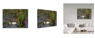 "Trademark Global J.D. Mcfarlan 'Water Lily Float' Canvas Art - 19"" x 14"""