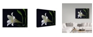 "Trademark Global J.D. Mcfarlan 'Lily 1 White' Canvas Art - 24"" x 18"""