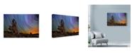 "Trademark Global Lincoln Harrison 'Metcalf Stump' Canvas Art - 19"" x 12"""