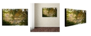 "Trademark Global Kurt Shaffer 'Window to Early Autumn' Canvas Art - 16"" x 24"""