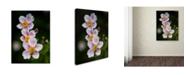 """Trademark Global Kurt Shaffer 'Late Summer Delicacy' Canvas Art - 35"""" x 47"""""""