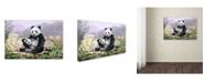 "Trademark Global The Macneil Studio 'Panda' Canvas Art - 22"" x 32"""