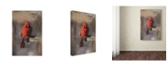 "Trademark Global Lois Bryan 'Bright Red Cardinal on a Perch' Canvas Art - 30"" x 47"""