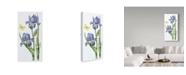 "Trademark Global Janneke Brinkman-Salentijn 'May Iris' Canvas Art - 24"" x 47"""